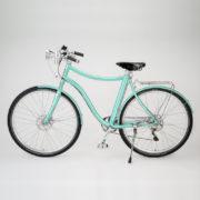 E-bike Stella uomo verde